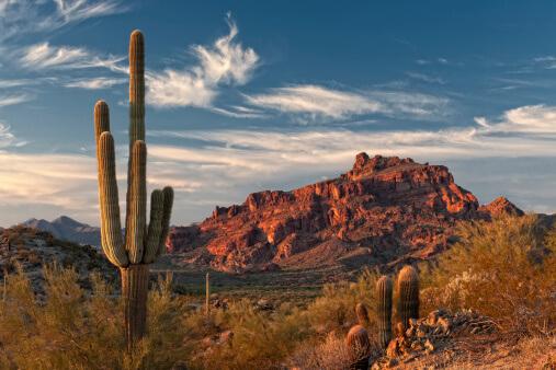 Day Trips To Take In Southern Arizona Castle Cooke Arizona